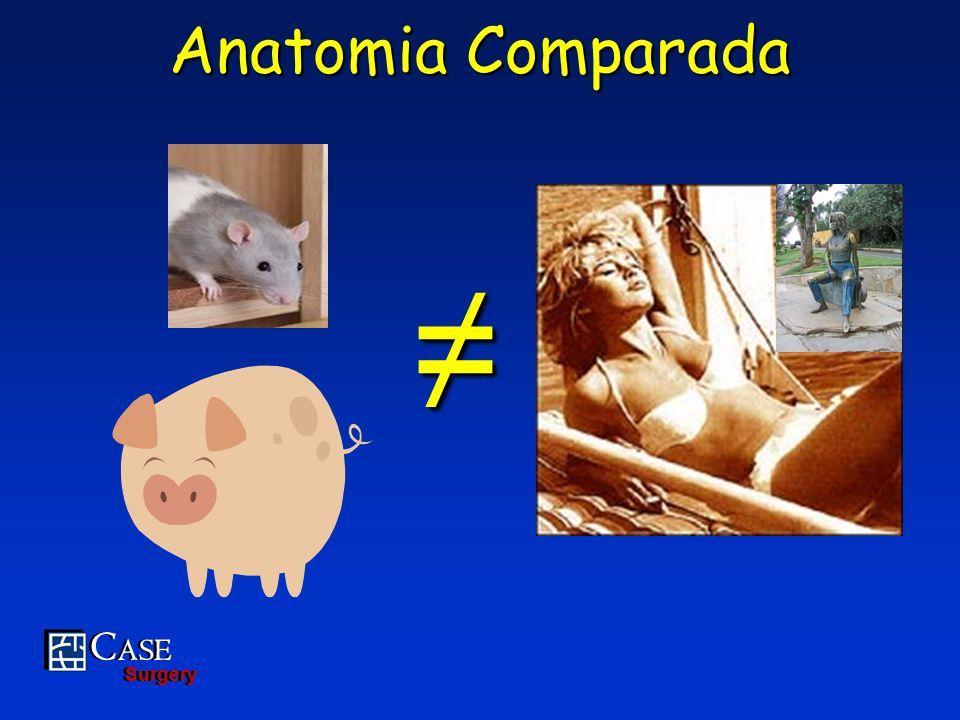 Anatomia Comparada ≠