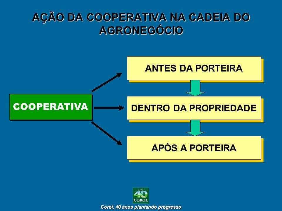 AÇÃO DA COOPERATIVA NA CADEIA DO AGRONEGÓCIO