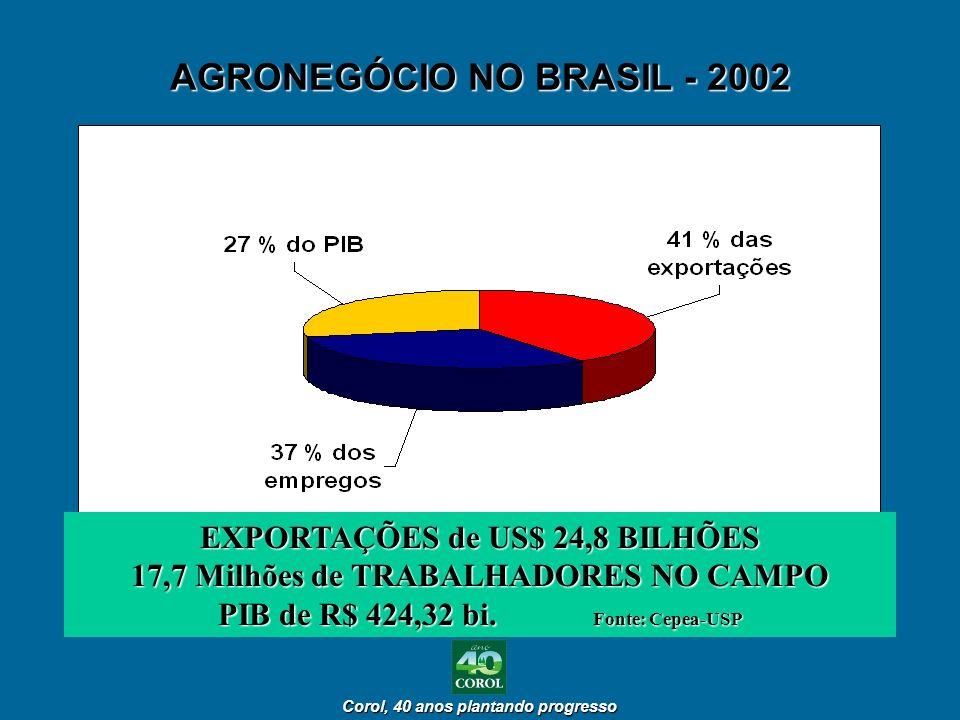 AGRONEGÓCIO NO BRASIL - 2002