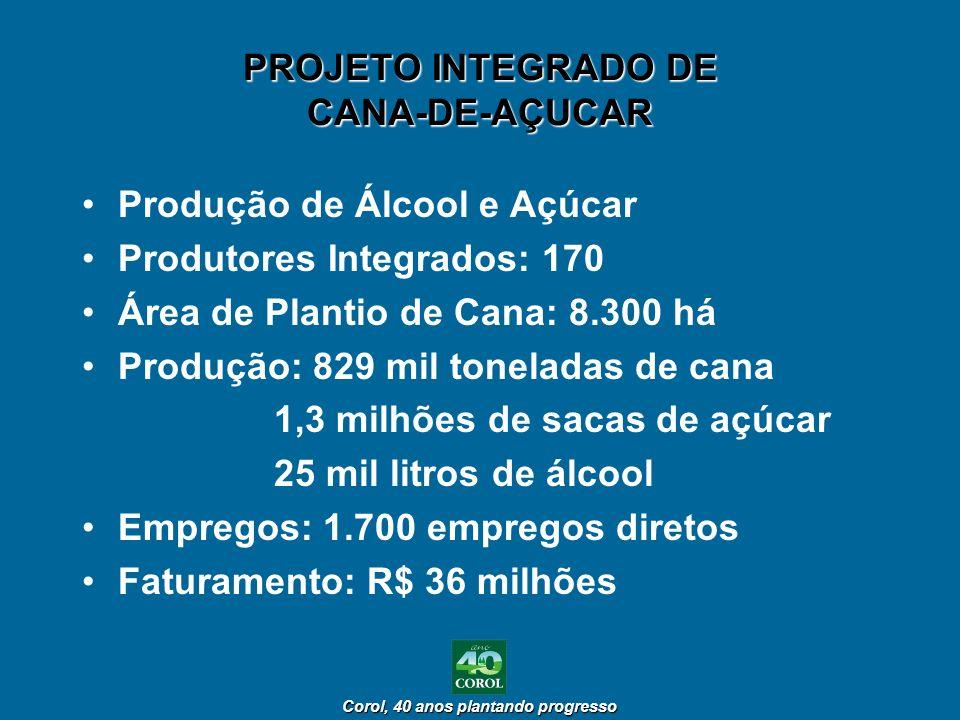 PROJETO INTEGRADO DE CANA-DE-AÇUCAR
