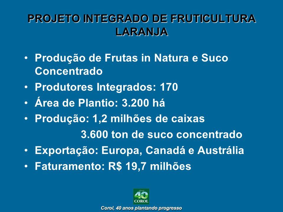 PROJETO INTEGRADO DE FRUTICULTURA LARANJA