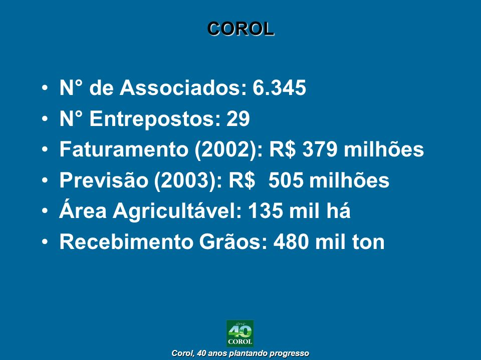 Faturamento (2002): R$ 379 milhões Previsão (2003): R$ 505 milhões