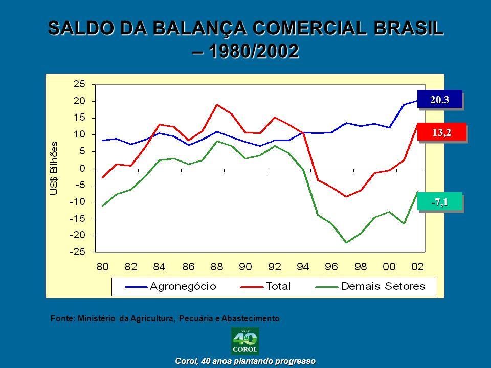 SALDO DA BALANÇA COMERCIAL BRASIL – 1980/2002