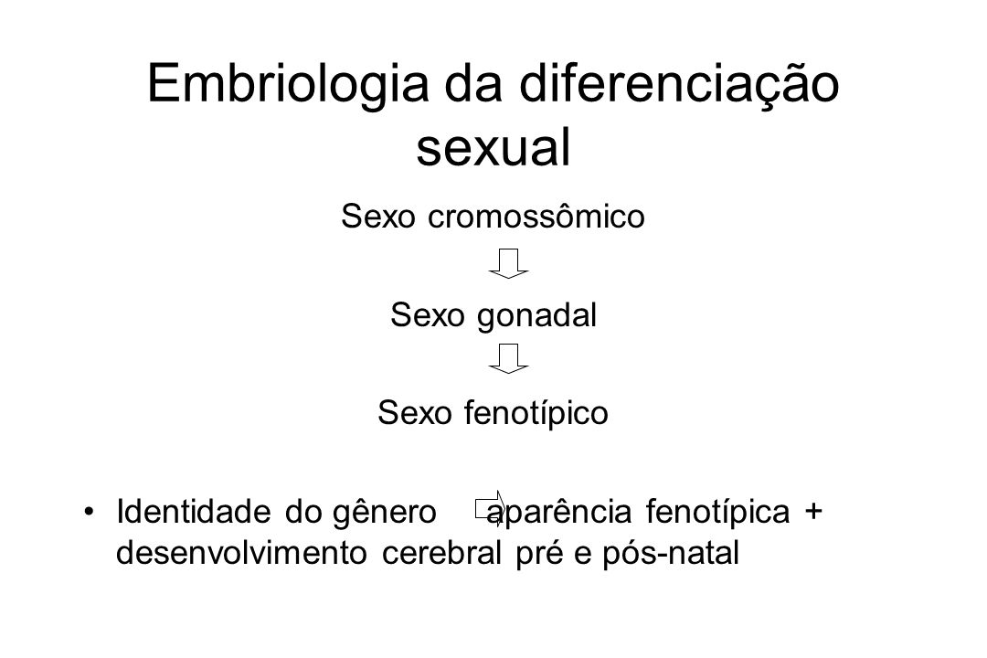 Embriologia da diferenciação sexual