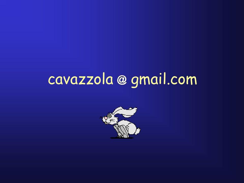 cavazzola gmail.com