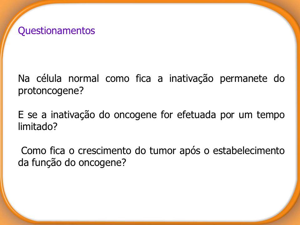 Questionamentos Na célula normal como fica a inativação permanete do protoncogene E se a inativação do oncogene for efetuada por um tempo limitado