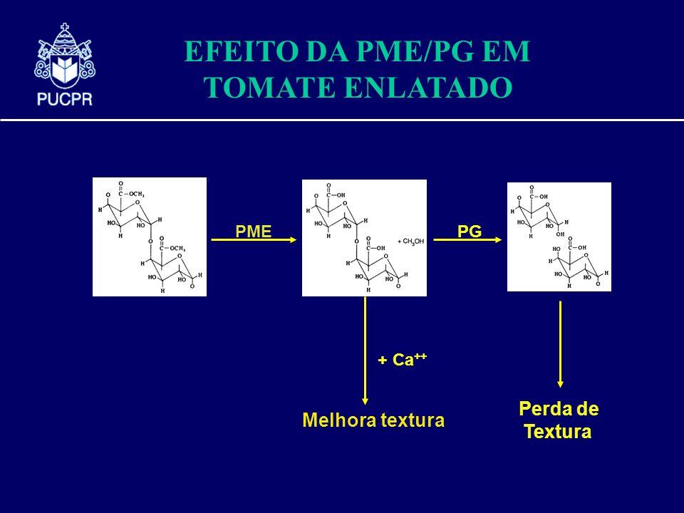 EFEITO DA PME/PG EM TOMATE ENLATADO