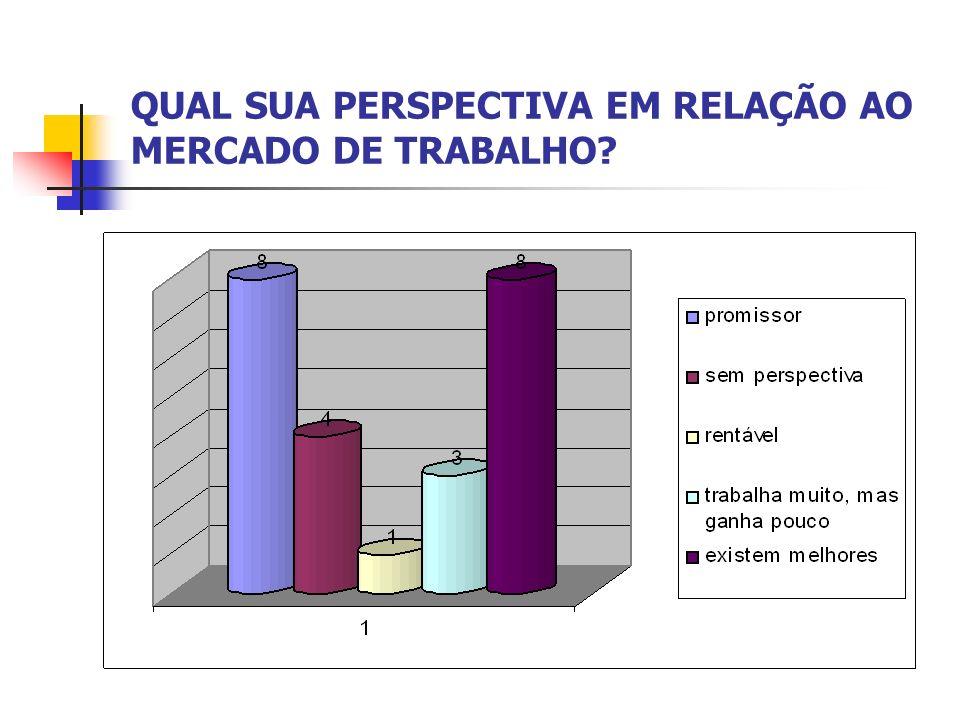 QUAL SUA PERSPECTIVA EM RELAÇÃO AO MERCADO DE TRABALHO