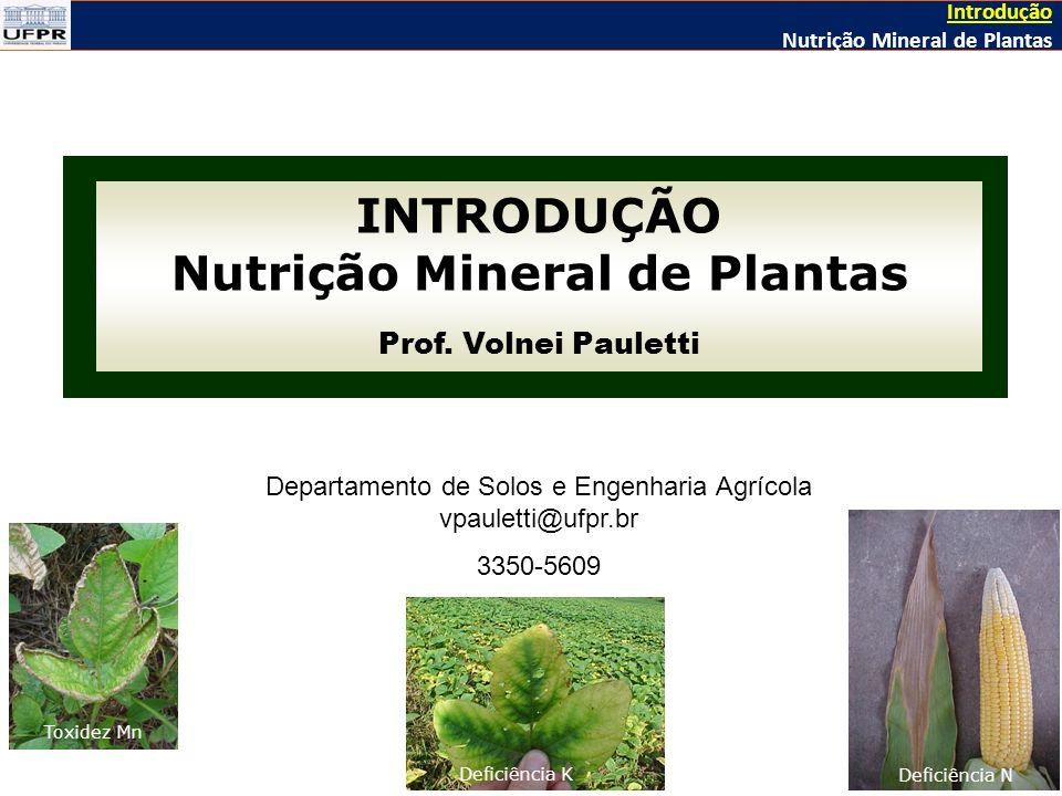 Nutrição Mineral de Plantas