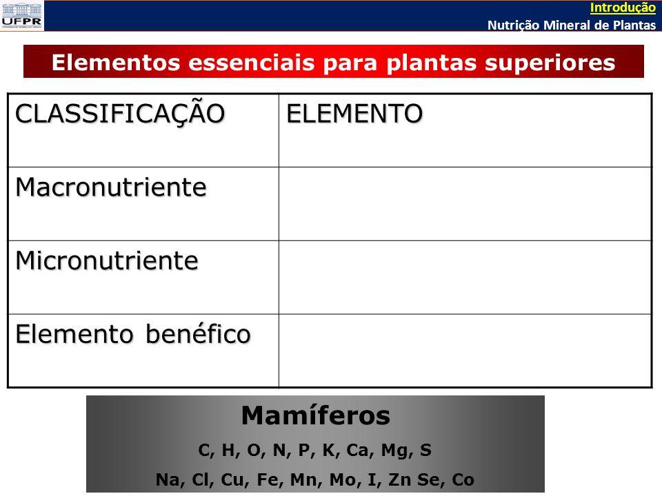 Elementos essenciais para plantas superiores