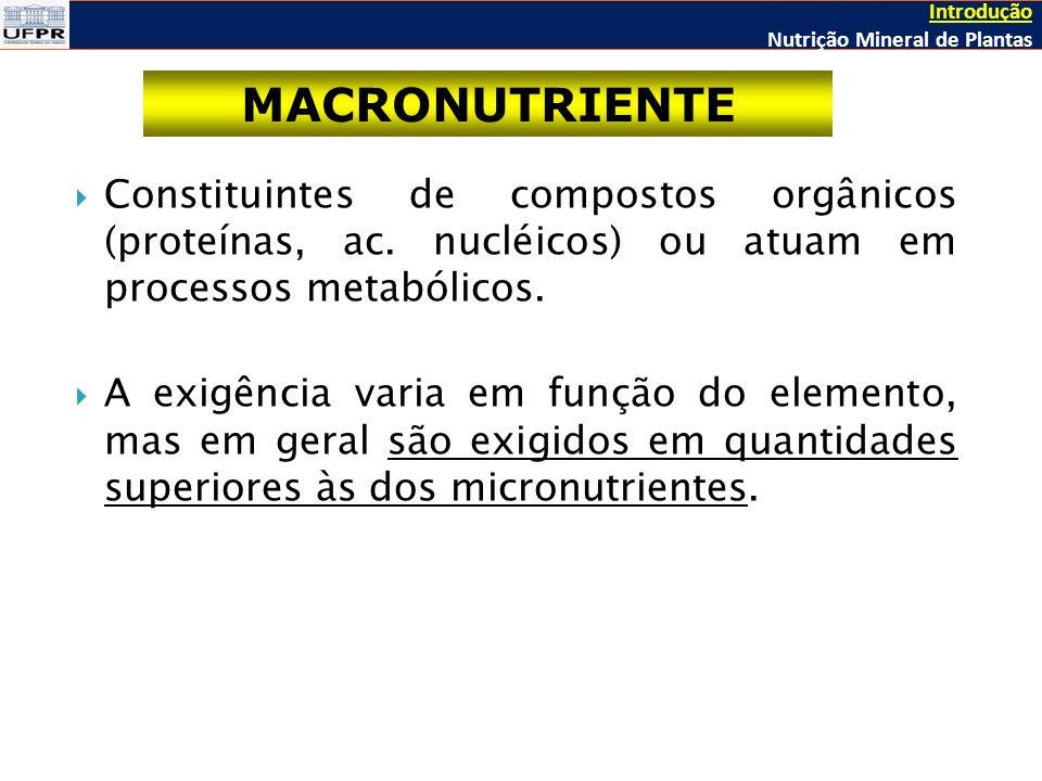 Introdução Nutrição Mineral de Plantas. MACRONUTRIENTE.