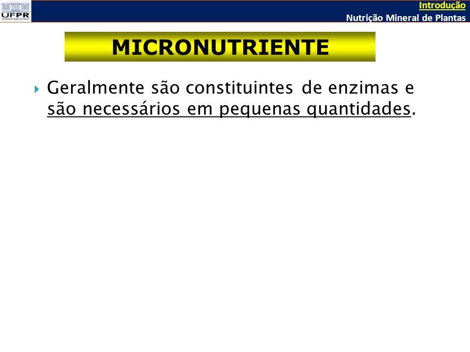 Introdução Nutrição Mineral de Plantas. MICRONUTRIENTE.