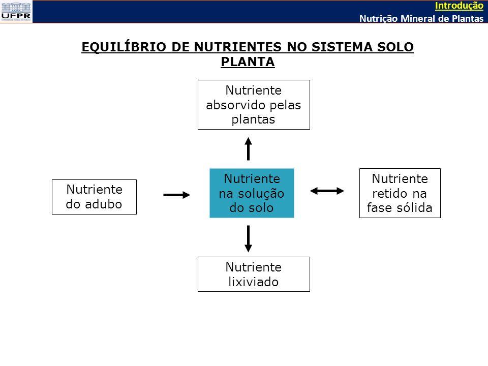 EQUILÍBRIO DE NUTRIENTES NO SISTEMA SOLO PLANTA