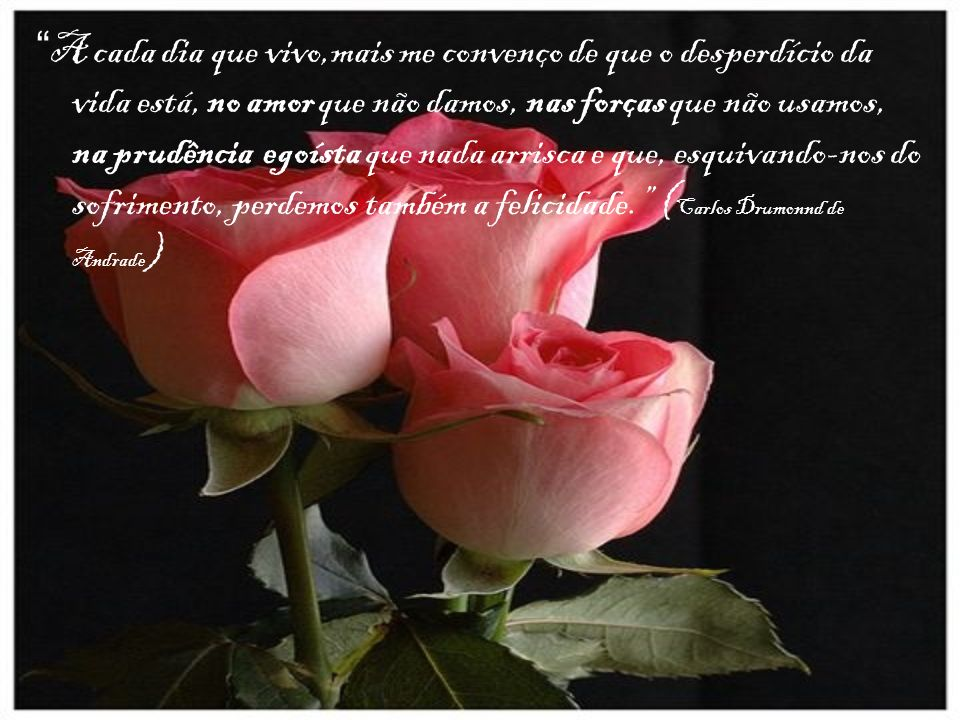 A cada dia que vivo,mais me convenço de que o desperdício da vida está, no amor que não damos, nas forças que não usamos, na prudência egoísta que nada arrisca e que, esquivando-nos do sofrimento, perdemos também a felicidade. (Carlos Drumonnd de Andrade)