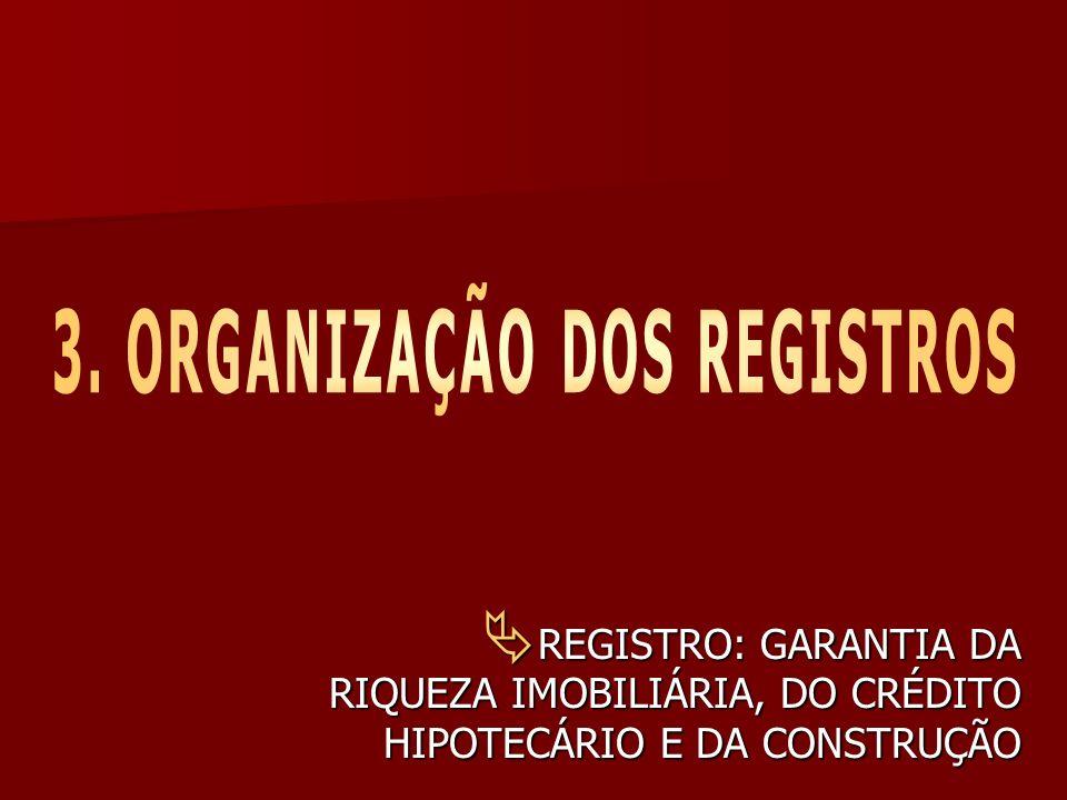 3. ORGANIZAÇÃO DOS REGISTROS