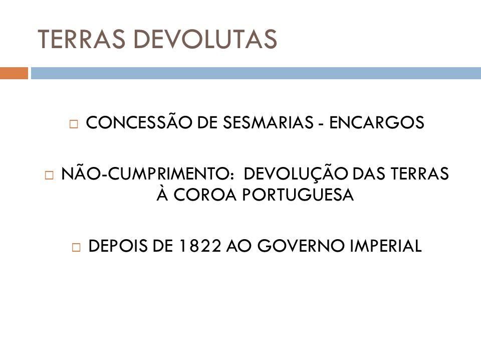 TERRAS DEVOLUTAS CONCESSÃO DE SESMARIAS - ENCARGOS