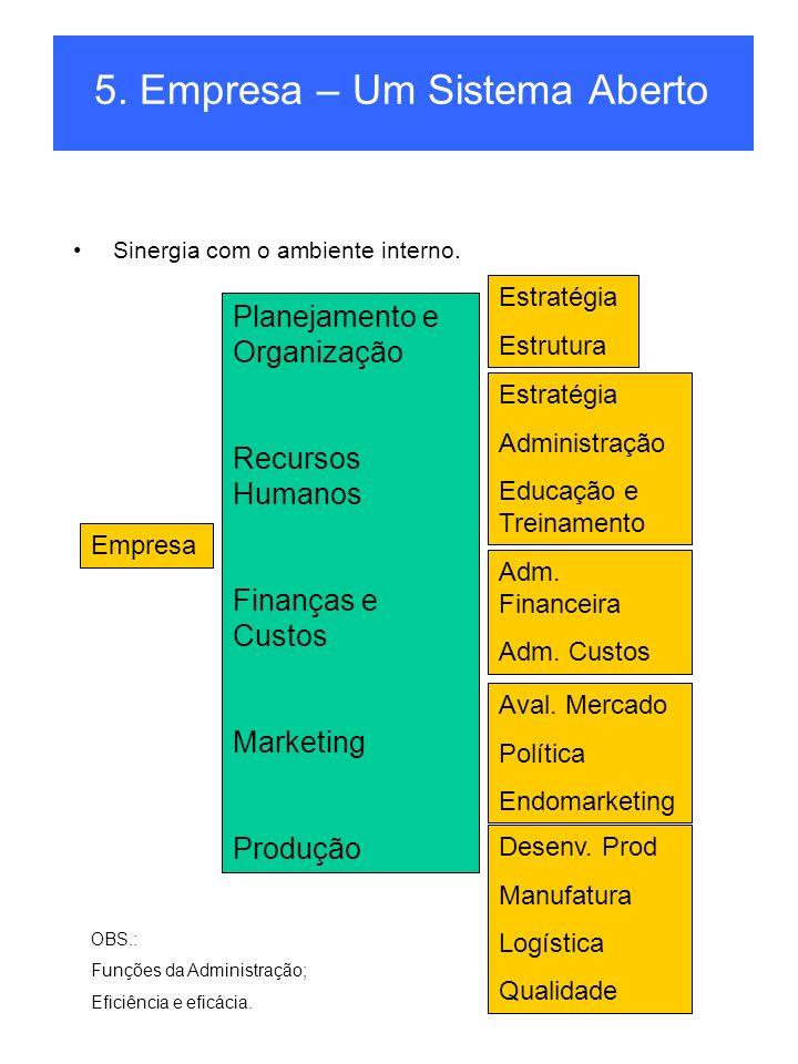 5. Empresa – Um Sistema Aberto