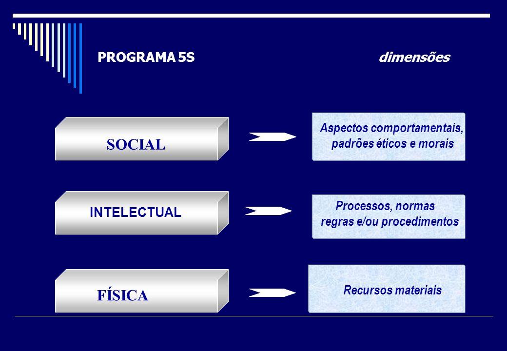 SOCIAL FÍSICA PROGRAMA 5S dimensões Aspectos comportamentais,