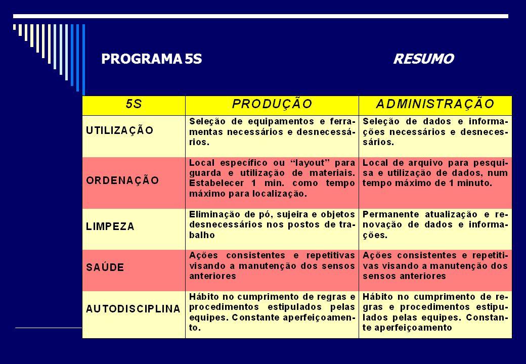 PROGRAMA 5S RESUMO