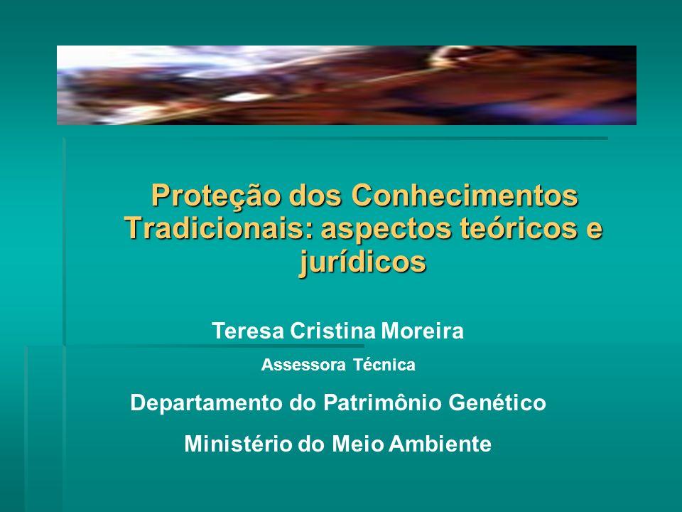 Proteção dos Conhecimentos Tradicionais: aspectos teóricos e jurídicos