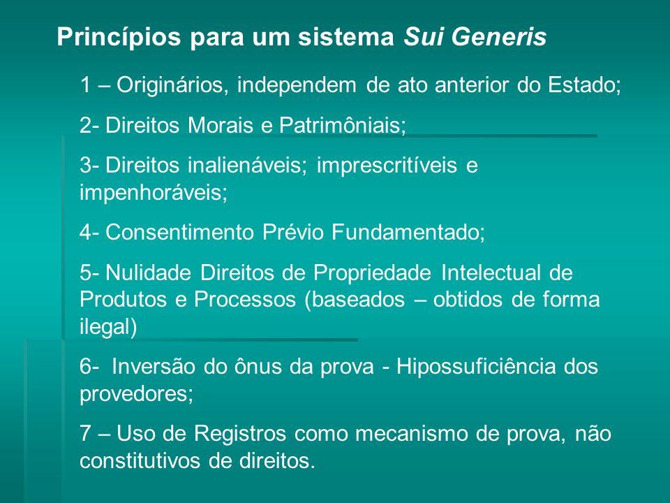 Princípios para um sistema Sui Generis