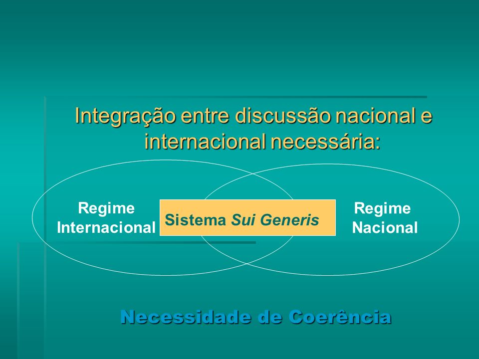 Integração entre discussão nacional e internacional necessária: