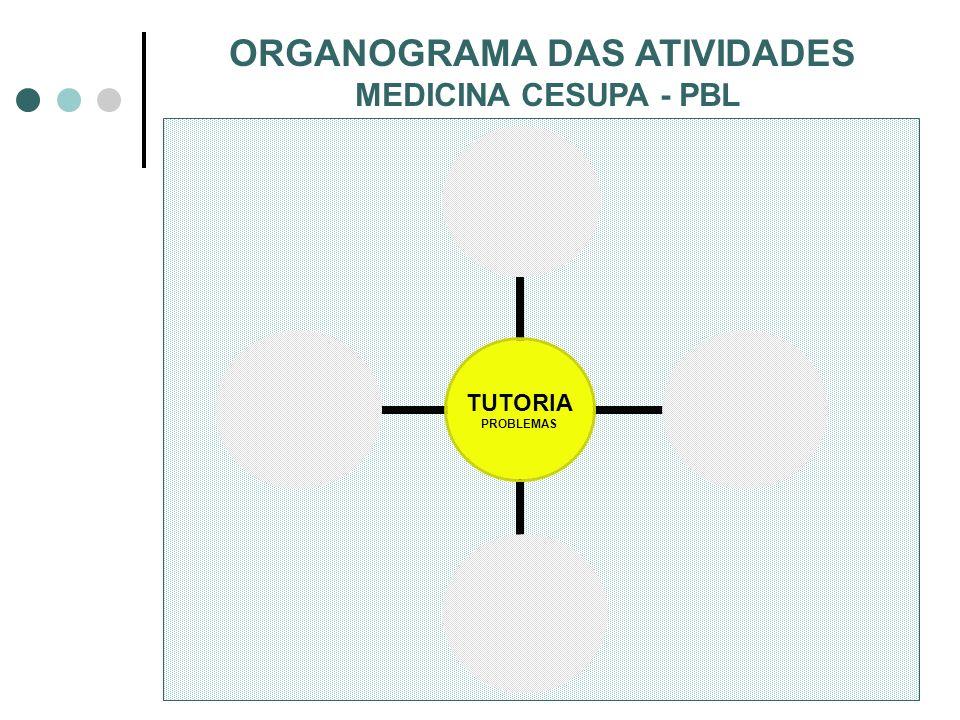 ORGANOGRAMA DAS ATIVIDADES
