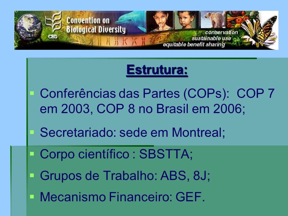 Estrutura: Conferências das Partes (COPs): COP 7 em 2003, COP 8 no Brasil em 2006; Secretariado: sede em Montreal;