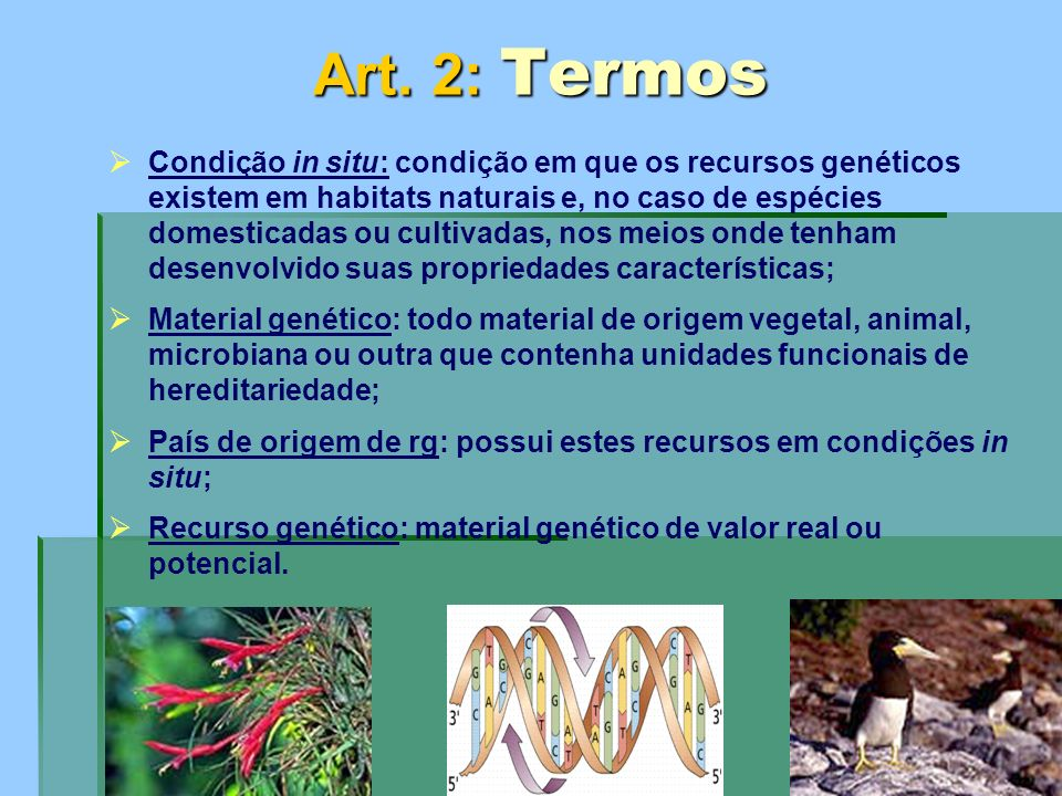 Art. 2: Termos