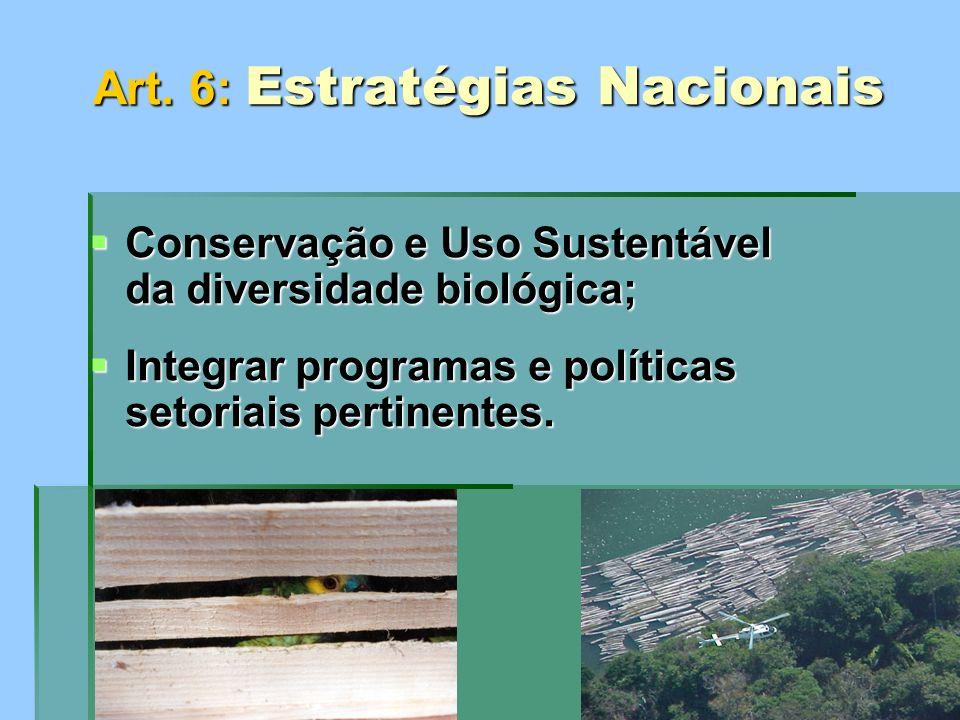 Art. 6: Estratégias Nacionais