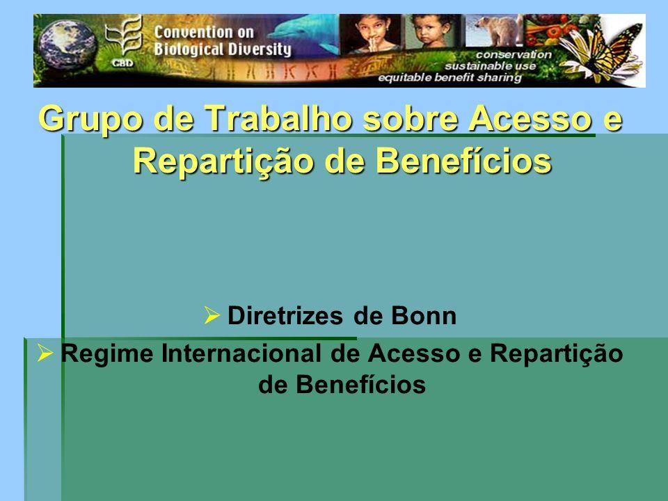 Grupo de Trabalho sobre Acesso e Repartição de Benefícios