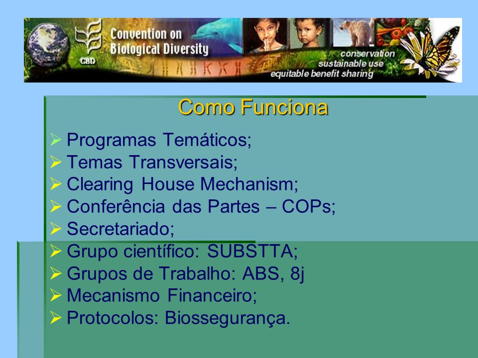 Como Funciona Programas Temáticos; Temas Transversais;