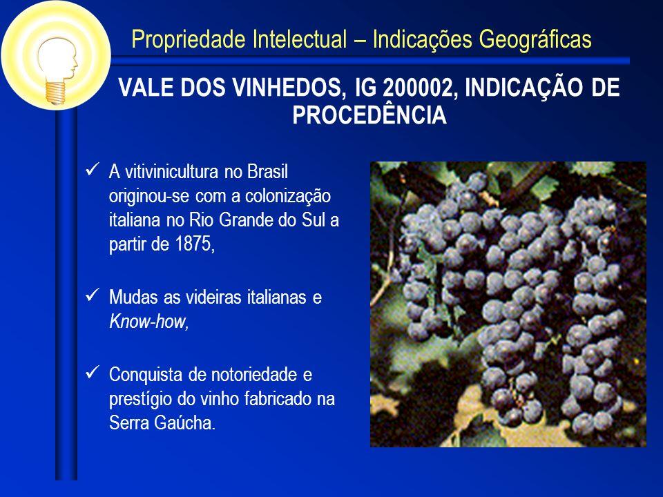 VALE DOS VINHEDOS, IG 200002, INDICAÇÃO DE PROCEDÊNCIA
