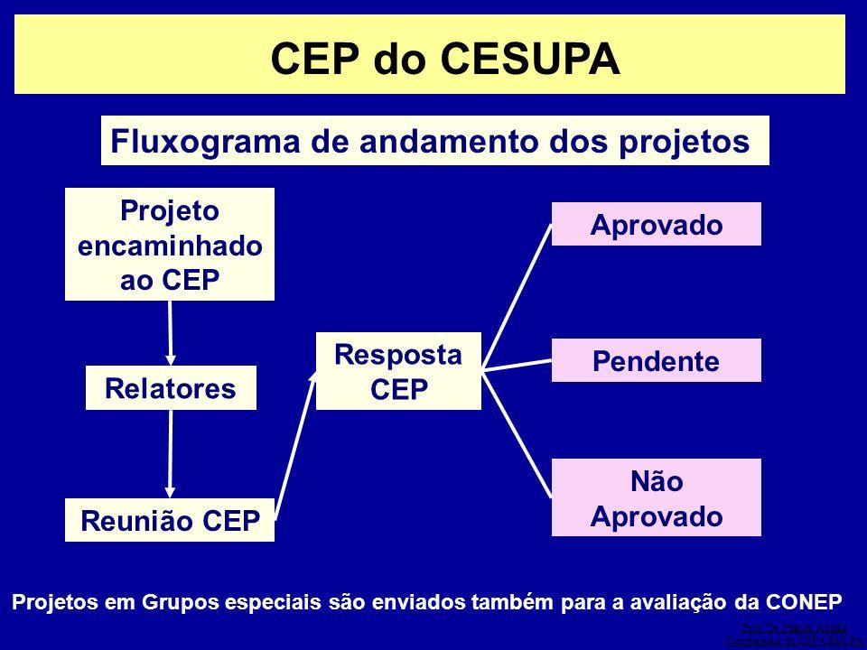CEP do CESUPA Fluxograma de andamento dos projetos Projeto