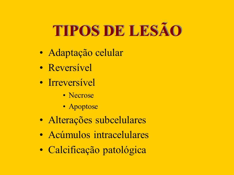TIPOS DE LESÃO Adaptação celular Reversível Irreversível
