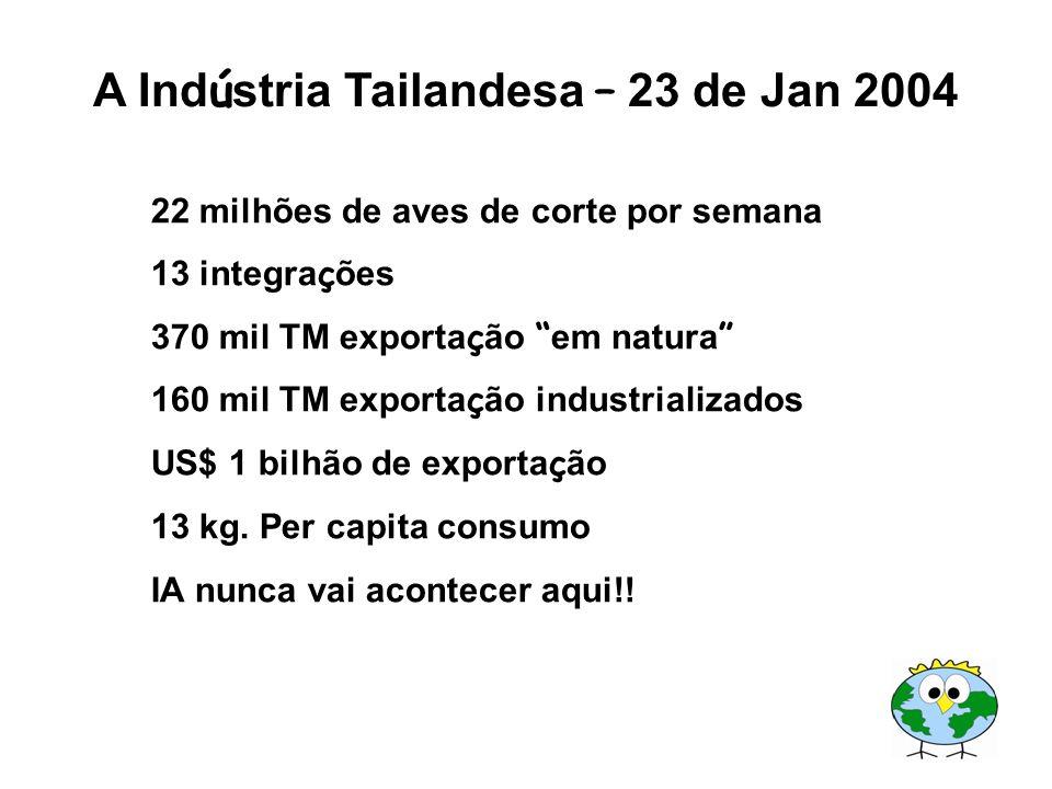 A Indústria Tailandesa – 23 de Jan 2004