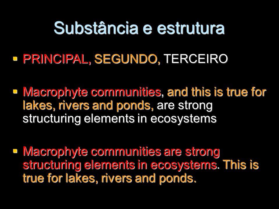 Substância e estrutura