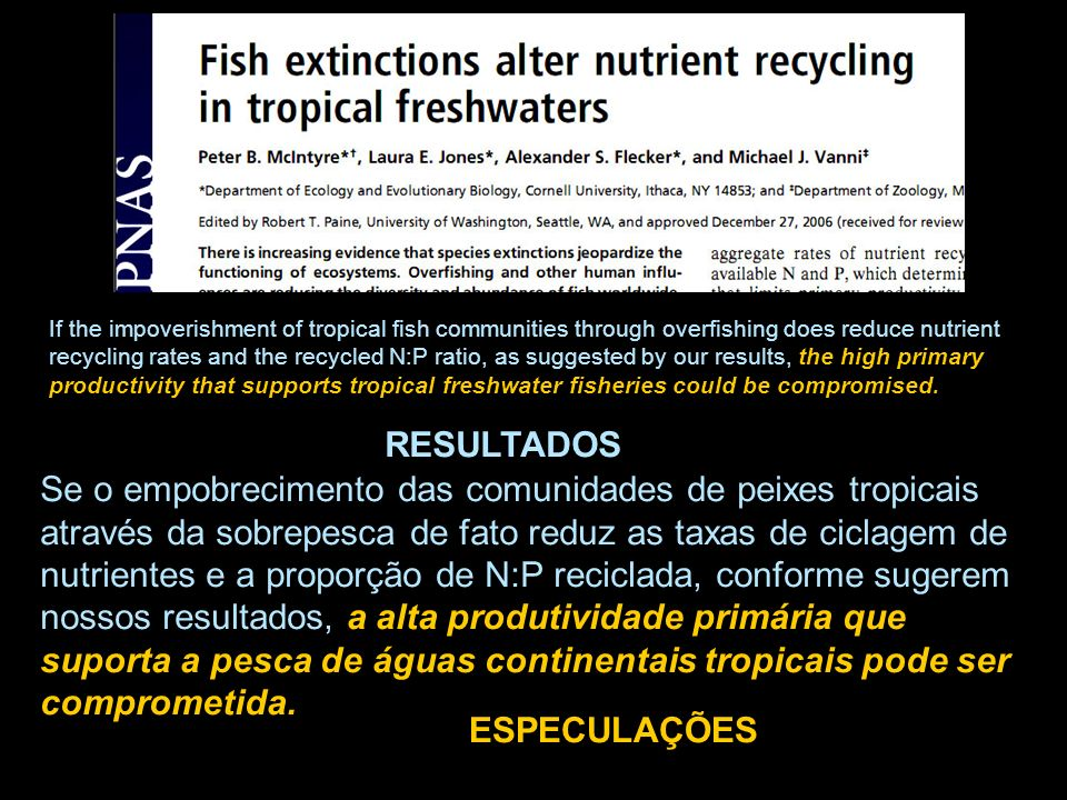 If the impoverishment of tropical fish communities through overfishing does reduce nutrient recycling rates and the recycled N:P ratio, as suggested by our results, the high primary productivity that supports tropical freshwater fisheries could be compromised.