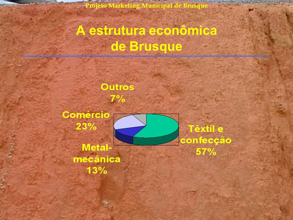 A estrutura econômica de Brusque