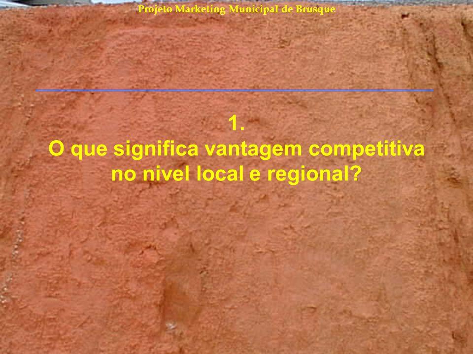 1. O que significa vantagem competitiva no nivel local e regional