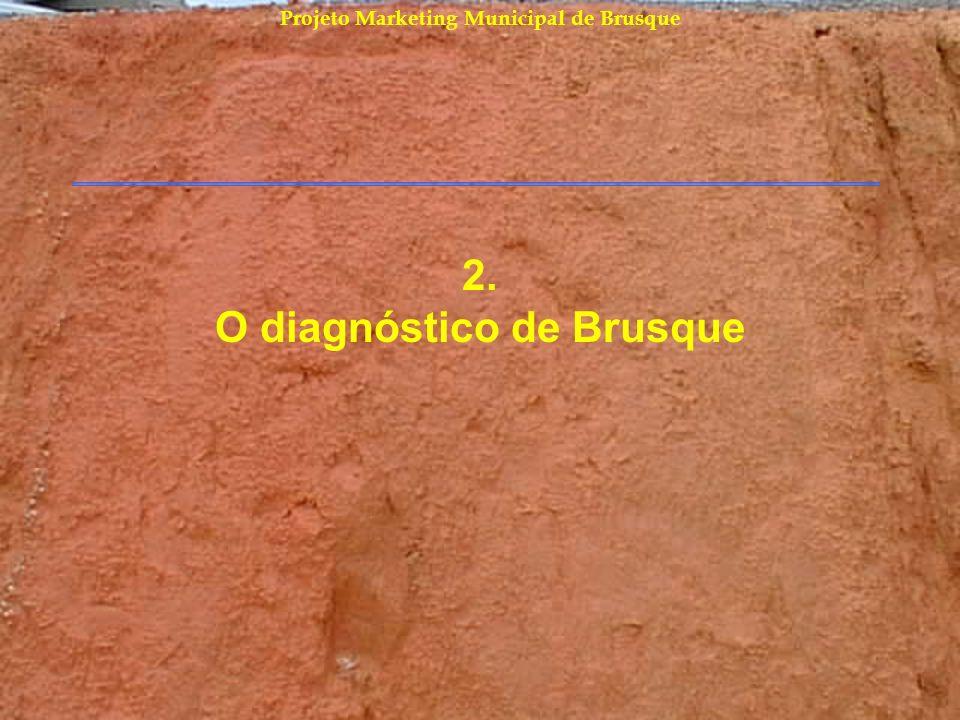 2. O diagnóstico de Brusque