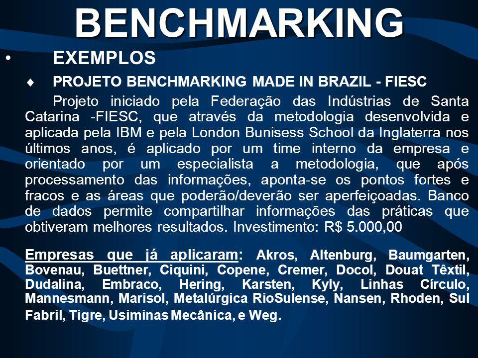 BENCHMARKING EXEMPLOS PROJETO BENCHMARKING MADE IN BRAZIL - FIESC