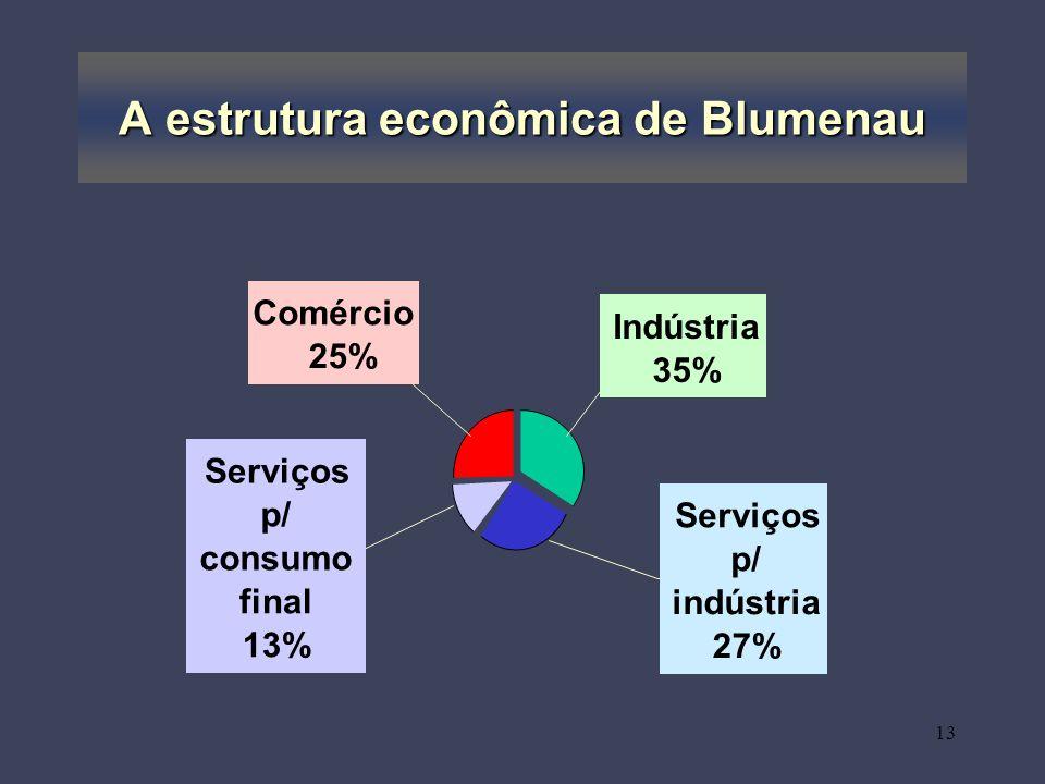A estrutura econômica de Blumenau