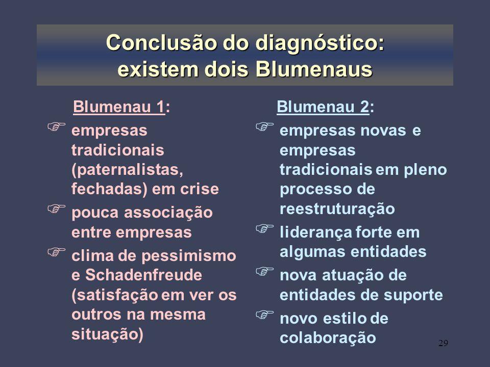 Conclusão do diagnóstico: existem dois Blumenaus