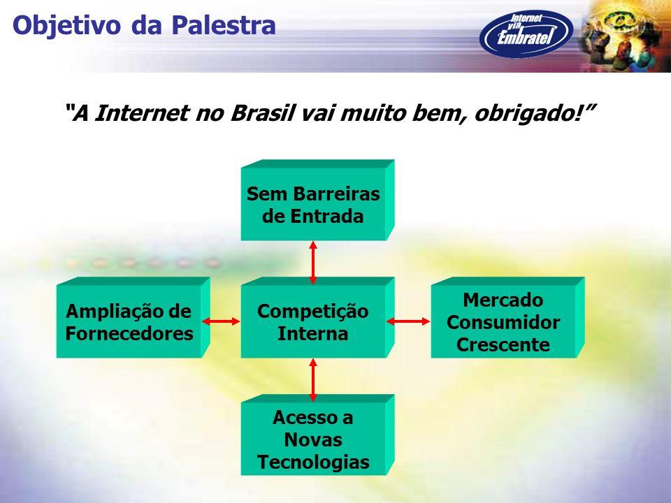 Objetivo da Palestra A Internet no Brasil vai muito bem, obrigado!
