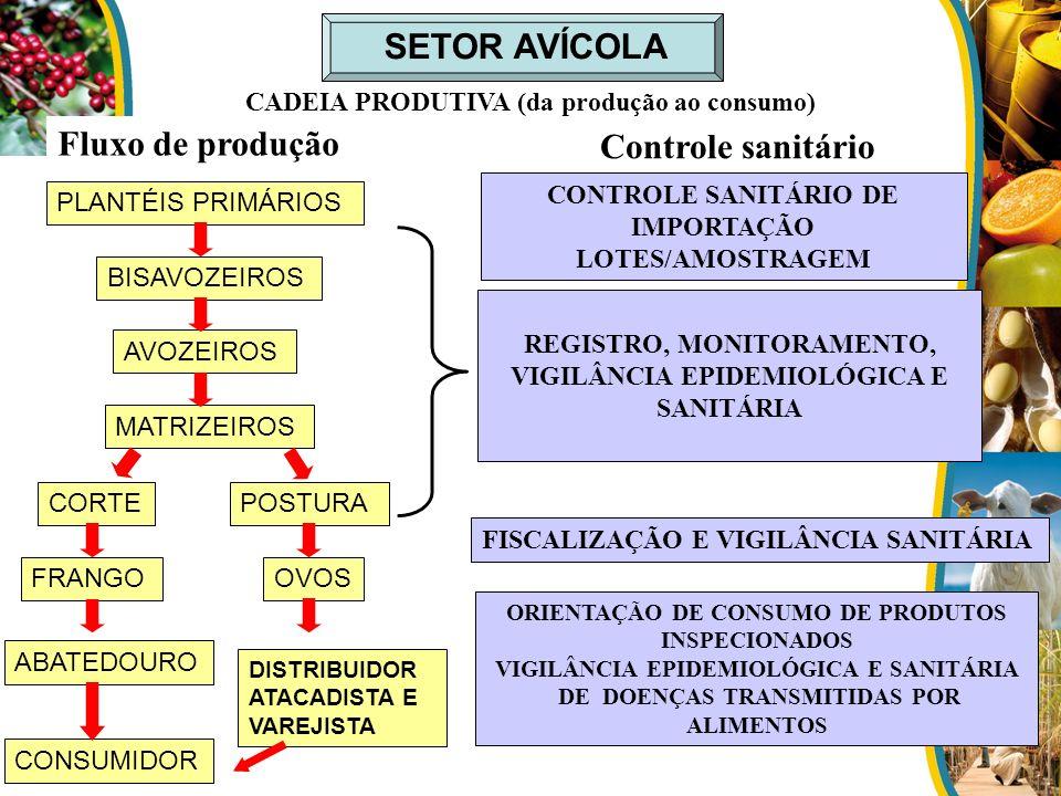 SETOR AVÍCOLA Fluxo de produção Controle sanitário