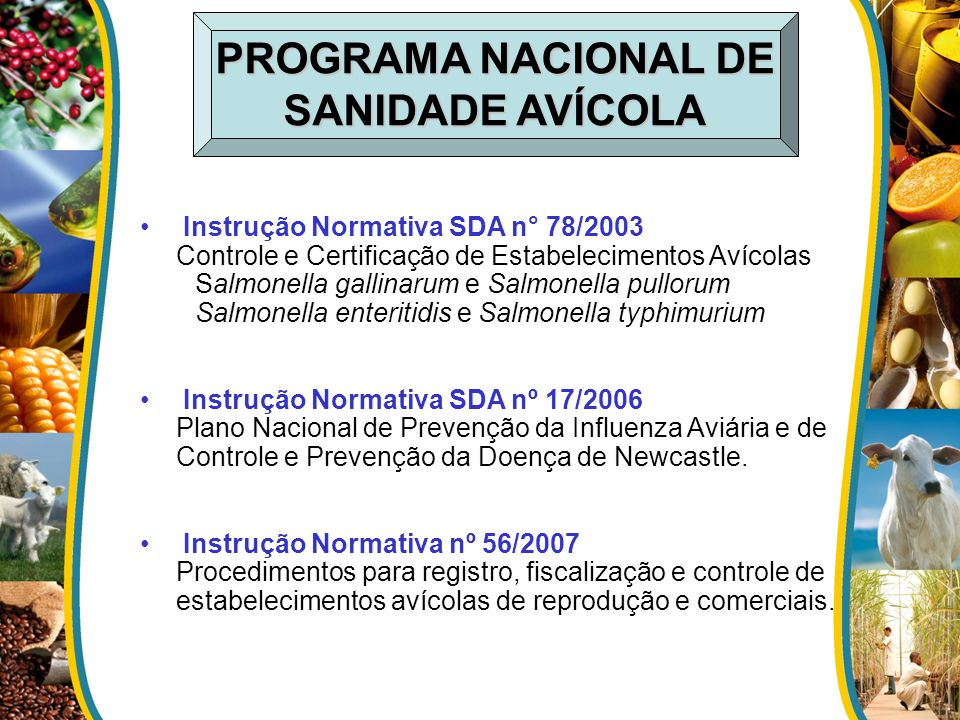 PROGRAMA NACIONAL DE SANIDADE AVÍCOLA