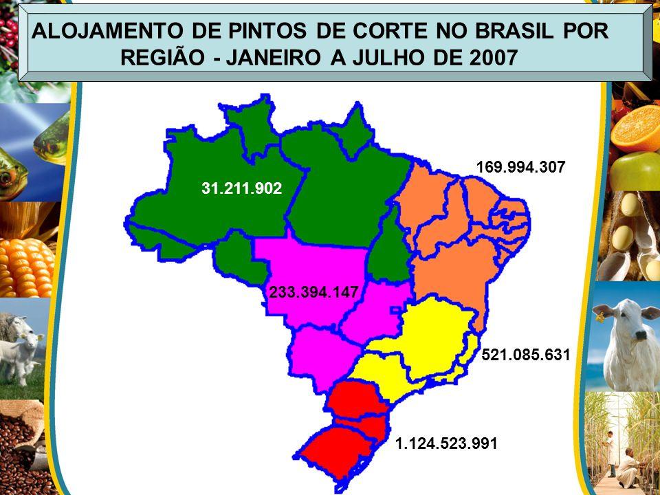 ALOJAMENTO DE PINTOS DE CORTE NO BRASIL POR REGIÃO - JANEIRO A JULHO DE 2007