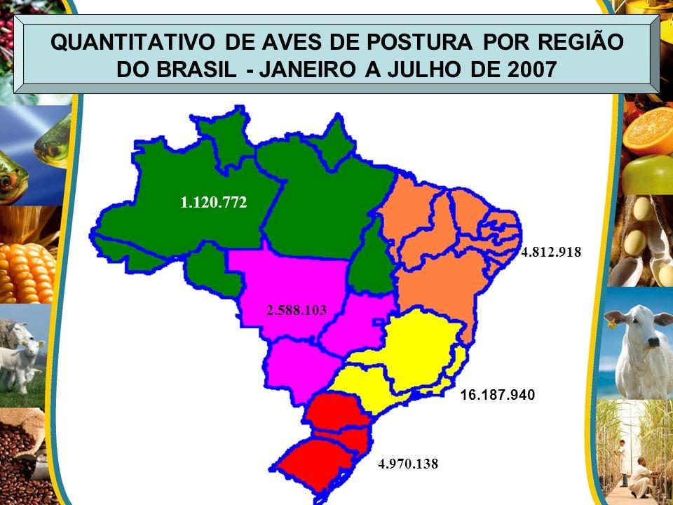 QUANTITATIVO DE AVES DE POSTURA POR REGIÃO DO BRASIL - JANEIRO A JULHO DE 2007