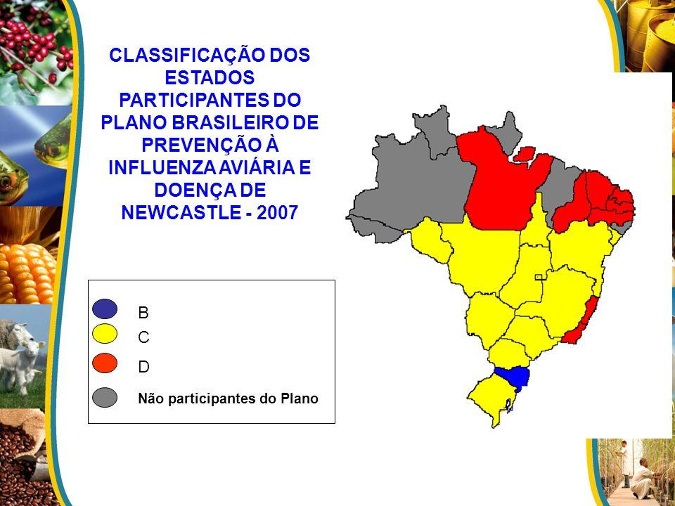 CLASSIFICAÇÃO DOS ESTADOS PARTICIPANTES DO PLANO BRASILEIRO DE PREVENÇÃO À INFLUENZA AVIÁRIA E DOENÇA DE NEWCASTLE - 2007